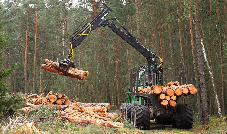 Metsäkoneenkuljettajat